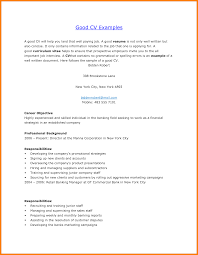 Good Resume Introduction Examples by Resume Introduction Resume For Your Job Application