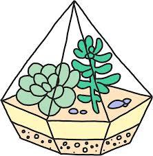 succulent cactus terrarium hipster garden print