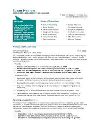 general manager marketing resume samples best example u2013 inssite
