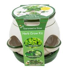 shop buzzy herb gardening kit at lowes com