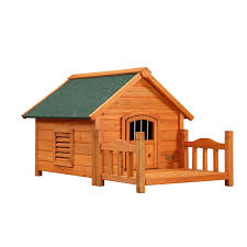 small house dogs amazon com pet squeak porch pups dog house small pet supplies