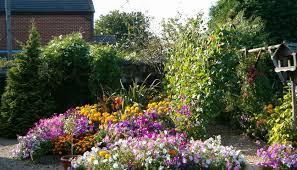 beds tag wallpapers english garden flowers seasonal summer flower