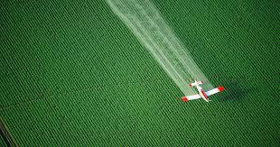 timeline for implementation of pesticide applicators rule