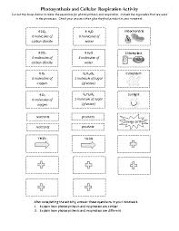 Photosynthesis And Cellular Respiration Worksheet Science Notebook Learn Sci