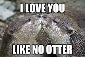 I Love You More Meme - 20 very sweet and funny i love you this much memes sayingimages com