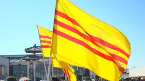 Viet Nam Flag Petition Representation Vietnamese Heritage And Freedom Flag