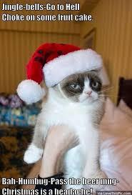 Grumpy Cat Memes Christmas - funny grumpy cat christmas meme funny pinterest christmas