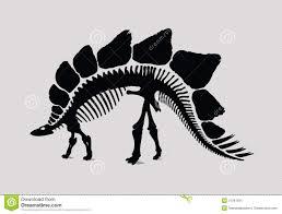 best photos of silhouettes dinosaur drawing dinosaur skeleton