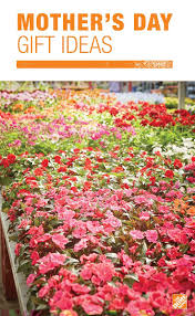 when is home depot spring black friday 23 best mother u0027s day images on pinterest mother day gifts