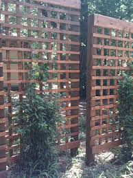 Privacy Trellis Ideas by Diy Embracing The Idea