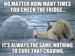 Coke Bear Meme - th id oip 49 9nsfufyw88yga2qerlghafj