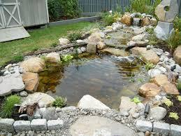 brenda pond water garden pezzotti brothers inc