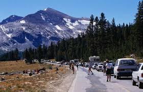 yosemite vehicle fees could go up to 70 under proposed national