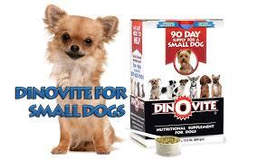 dino vite dinovite for small dogs