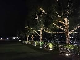 christmas lights tree wrap 100m 600led waterproof outdoor party lights christmas holiday
