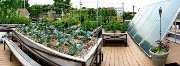 roof top farm uncommon ground