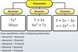 break multiplying expressions by monomial