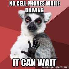 It Can Wait Meme - no cell phones while driving it can wait chill out lemur meme