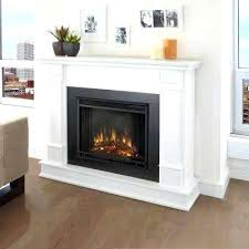 Fireplace Electric Insert Real Fireplace Electric Fireplace In White Real Gel