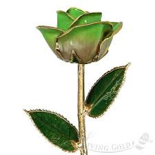 Rose Dipped In Gold Real Rose Dipped In 24k Gold By Living Gold Light Green August