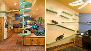 Furniture Design Ideas Furniture Design Ideas For Cat Lovers Youtube