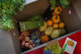 fruit delivery chicago seattle s affair with fruits and veggies the seattle times