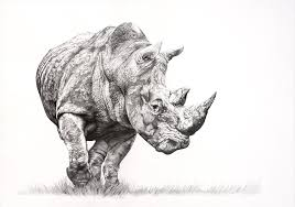 helping rhinos artists