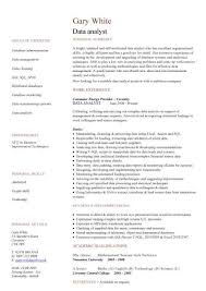 Data analyst CV template
