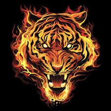 t shirt custom design tiger in flames on buy splendid design cotton