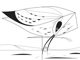 charley harper coloring book of birds charley harper