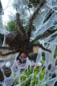giant jumping spider spirit halloween hosting a spooky halloween dinner party at spider temple