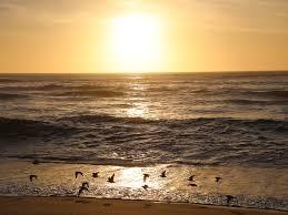 50sec walk to beach 2 free monterey bay vrbo