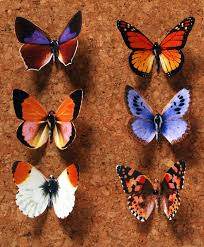 38 beautiful butterfly craft ideas allfreeholidaycrafts com