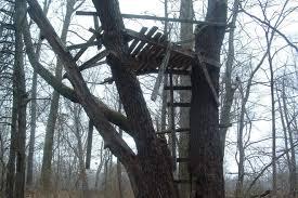 Tree Trunk Hunting Blind Diy Hunting Blinds Gohunt