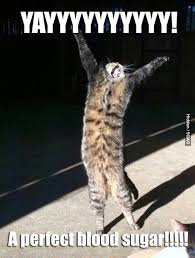 Diabetes Cat Meme - 94 best life of a diabetic images on pinterest diabetes