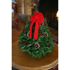 Pre Decorated Christmas Trees Tabletop by Real Christmas Trees You U0027ll Love Wayfair