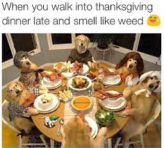 Thanksgiving Meme Funny - funny thanksgiving pictures for facebook picsgalary