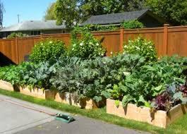 Outdoor Room Ideas Australia - living roomackyard gardenox design ideas and raised australia with