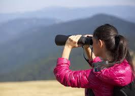 nikon travel light binoculars the best binoculars for travel birding and stargazing 2018 guide