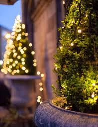 Apple String Lights by Christmas Tree Light Ideas Christmas Light Ideas Inspiration