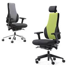 Chairs For Posture Support 37 Best Back Care Chairs Images On Pinterest Office Furniture