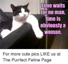 Cute No Meme - lime waits for no man time is obviously a woman for more cute pics