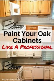 Oak Cabinet Kitchen Makeover - oak cabinet makeover how to paint like a professional diva of diy