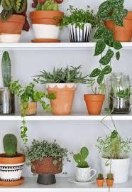 terracotta pot inspiration diy painted pots indoor gardening