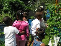 Club Summer Garden - summer garden club at pembroke house pembroke house