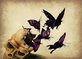 47 best butterflies and skulls images on butterflies