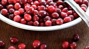 thanksgiving cranberry recipe 28 mouthwatering cranberry recipes health
