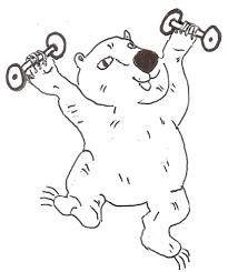 wombat fitness