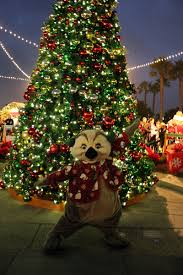seaworld san diego christmas celebration is full of holiday cheer