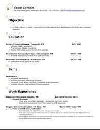 resume objective insurance resume objective exles customer service